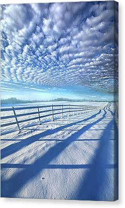 Canvas Print featuring the photograph Always Whiter On The Other Side Of The Fence by Phil Koch