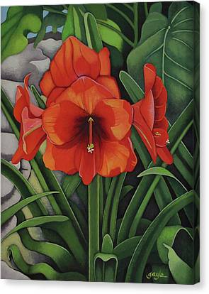 Amaryllis Canvas Print by Gayle Faucette Wisbon
