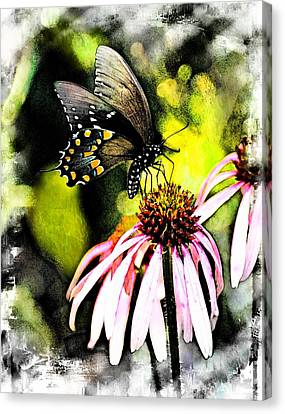 Amazing Butterfly Watercolor 2 Canvas Print
