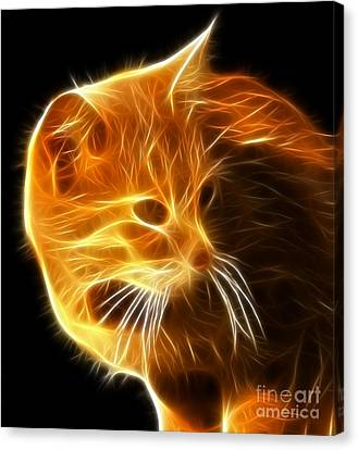 Amazing Cat Portrait Canvas Print