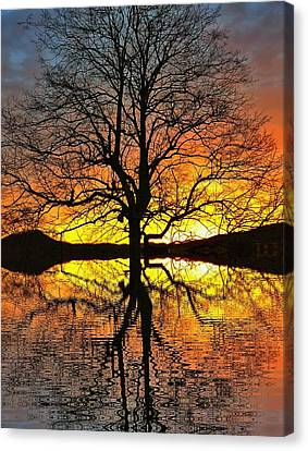 Amazing Glory Canvas Print