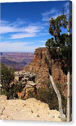 Amazing Grand Canyon Canvas Print