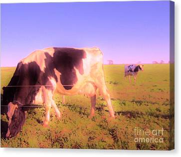 Canvas Print featuring the photograph Amazing Graze by Susan Carella