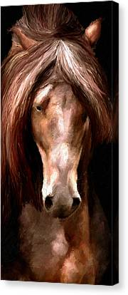 Canvas Print featuring the painting Amazing Horse by James Shepherd