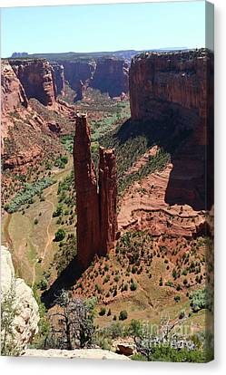 Amazing Spider Rock Canvas Print