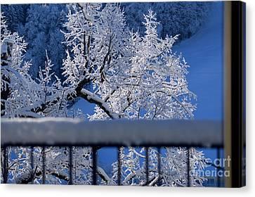 Amazing - Winterwonderland In Switzerland Canvas Print by Susanne Van Hulst