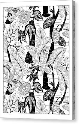 Amazon Black And White Canvas Print by Jacqueline Colley