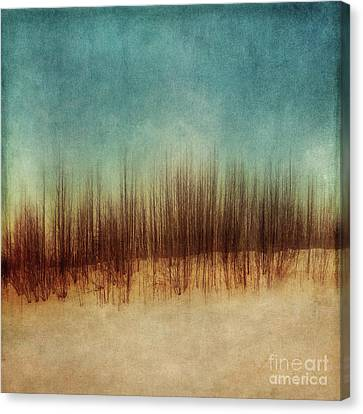 Amber And Blues Canvas Print by Priska Wettstein