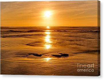 Amber Embers Canvas Print