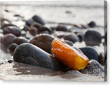 Amber Stone On Rocky Beach Canvas Print by Michal Bednarek