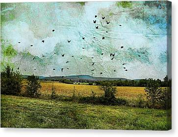 Country Scene Canvas Print - Amber Waves Of Grain by Jan Amiss Photography