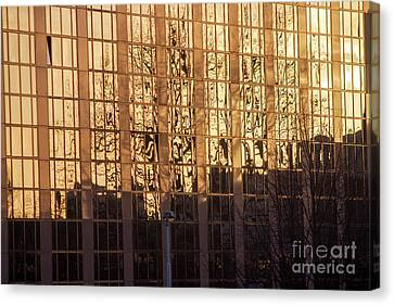 Amber Window Canvas Print