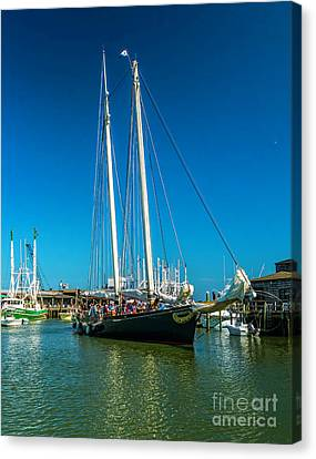 America In Cape May Canvas Print by Nick Zelinsky
