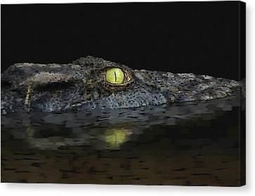 American Aligator Canvas Print by Kathie Miller