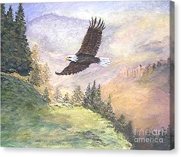 American Bald Eagle Canvas Print by Nicholas Minniti