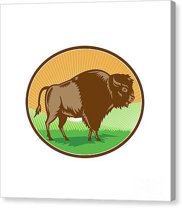 American Bison Oval Woodcut Canvas Print by Aloysius Patrimonio
