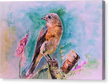 American Blue Bird Canvas Print