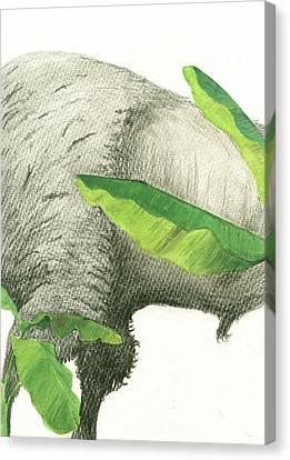 Banana Art Canvas Print - American Buffalo 2 by Juan Bosco