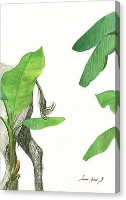 Banana Art Canvas Print - American Buffalo 3 by Juan Bosco