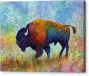 American Buffalo 5 Canvas Print by Hailey E Herrera