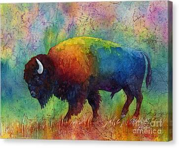 American Buffalo 6 Canvas Print by Hailey E Herrera