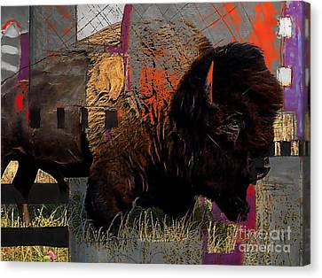 American Buffalo Collection Canvas Print by Marvin Blaine
