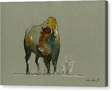 American Buffalo Canvas Print by Juan  Bosco