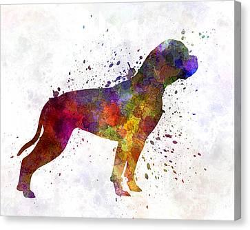 American Bulldog 01 In Watercolor Canvas Print by Pablo Romero