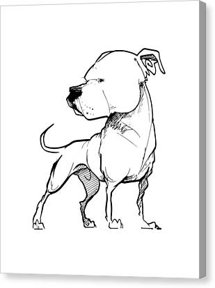 Bulldogs Canvas Print - American Bulldog Gesture Sketch by John LaFree