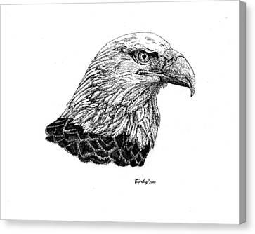 American Eagle Canvas Print by Cynthia  Lanka