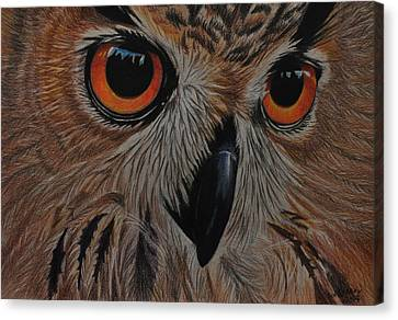 Canvas Print featuring the drawing American Eagle Owl by Jo Baner