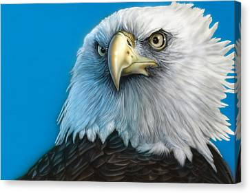 American Eagle Canvas Print by Wayne Pruse