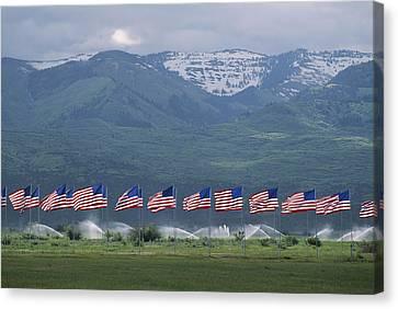 American Flags Honoring Veterans Canvas Print by James P. Blair