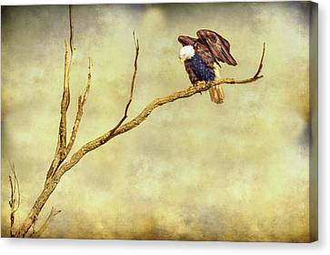 Canvas Print featuring the photograph American Freedom by James BO Insogna
