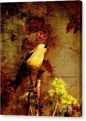 American Goldfinch Perched . Photoart Canvas Print by Wingsdomain Art and Photography