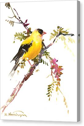 American Goldfinch Canvas Print by Suren Nersisyan