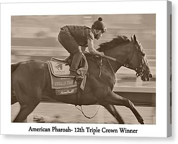American Pharoah Canvas Print by See My  Photos