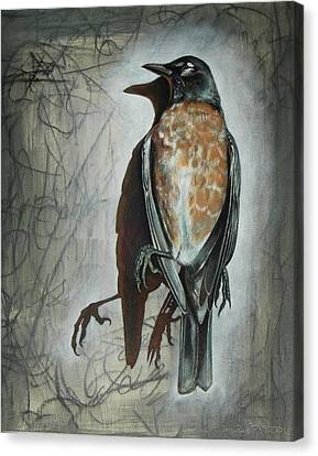 Canvas Print featuring the mixed media American Robin by Sheri Howe