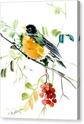 American Robin Canvas Print by Suren Nersisyan