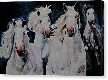 American White Canvas Print
