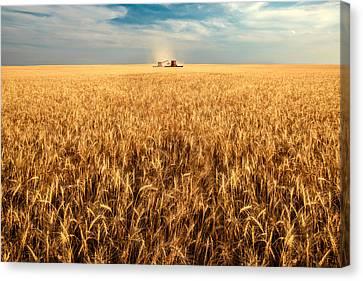 America's Breadbasket Canvas Print by Todd Klassy