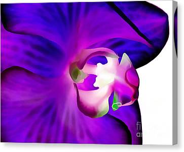 Amethyst Orchid Canvas Print by Krissy Katsimbras