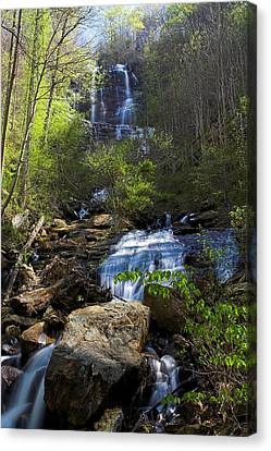Canvas Print featuring the photograph Amicalola Falls by Dan Wells