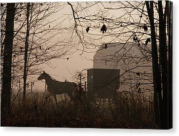Amish Buggy Fall Canvas Print