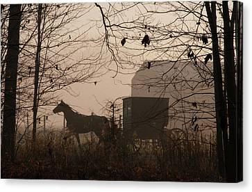 Amish Buggy Fall Canvas Print
