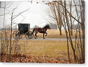 Amish Dream 1 Canvas Print