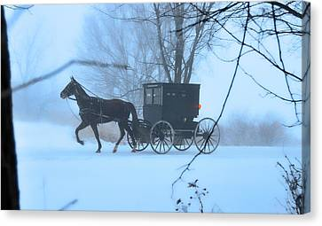 Amish Dreamscape Canvas Print