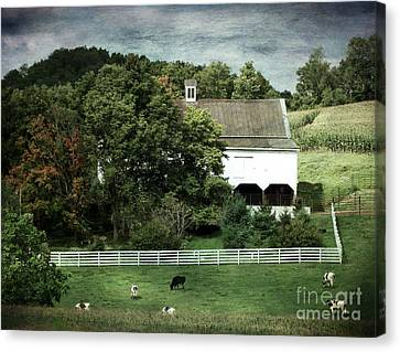 Amish Farm In The Fall With Textures Canvas Print by Gena Weiser