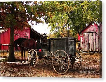 Amish Farms Canvas Print - Amish Farm Wagon by Terril Heilman