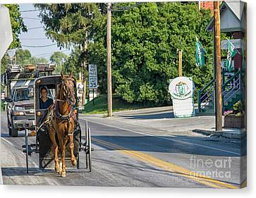 Canvas Print featuring the photograph Amish Girl On The Road by Patricia Hofmeester